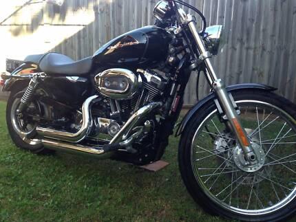 008 Harley-Davidson 1200 Custom (XL1200C)