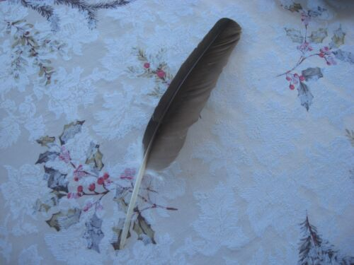 """13 1/2"""" Vintage Indian Outfit Costume Feather Highly Collectible Piece Awesome"""