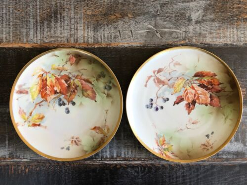 Pair of Hand-Painted Ernst Wahliss Artist Signed Plates 9 1/4""