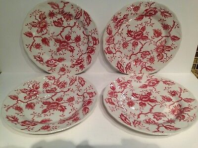 - Style House PINK FLORA Dinner Plates 10