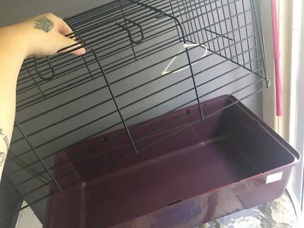 Guinea pig carry cage