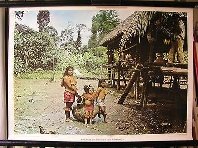Schulwandbild Mural Image Indian Oberlauf Amazonas Brasilen South America 72x52