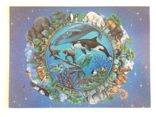 4 Christmas Cards Wildlife Earth Animal Sealife Africa Rainforest Planet Holiday