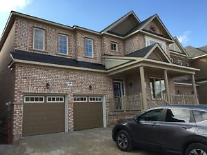 House for rent at Brampton Mount Pleasant