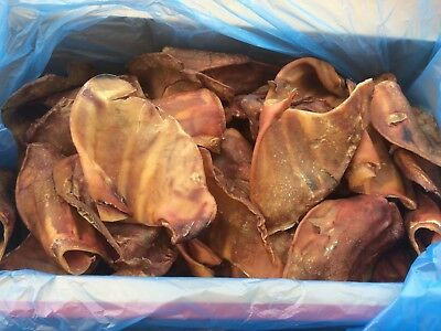 QUALITY 1st, 50 x LARGE/THICK PIGS EARS.GUARANTEED QUALITY DOG TREAT