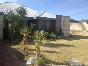 Butler 2 rooms available Butler Wanneroo Area Preview