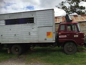 Horse truck Albany Albany Area Preview