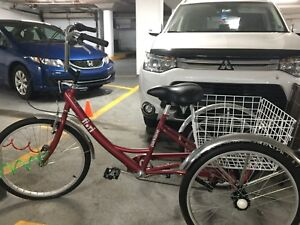 Norco/Fiori Parklane Adult Trike