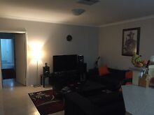 Housemates seeking new tenant! Modern & great location Victoria Park Victoria Park Area Preview