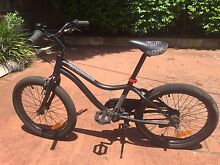 Kids bike made by Giant Bexley North Rockdale Area Preview