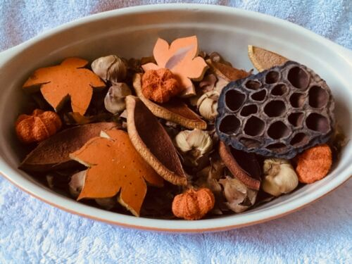 Fall Pumpkin Potpourri Gourds cinnamon Lotus Dried pods Floral Decor Crafts