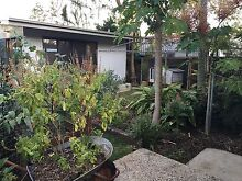 50m walk to train station well-maintained house available now New Farm Brisbane North East Preview