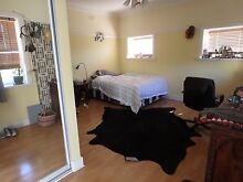Caulfield North-Funky Mansion, warm housemates, great wonder dog! Caulfield North Glen Eira Area Preview