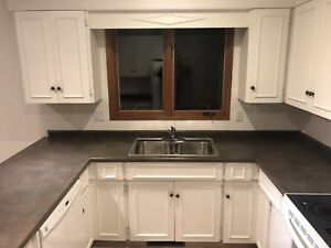 Kitchen cabinets counter and sink
