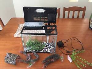 small fish tank Eatons Hill Pine Rivers Area Preview