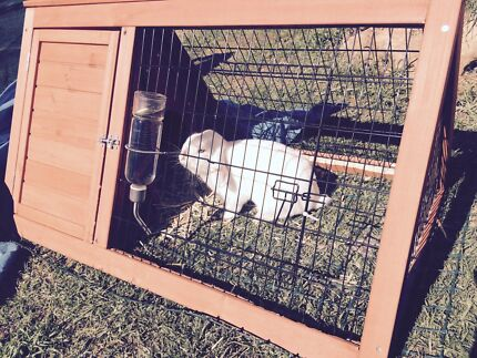 A rabbit cage that is in great condition Warragamba Wollondilly Area Preview
