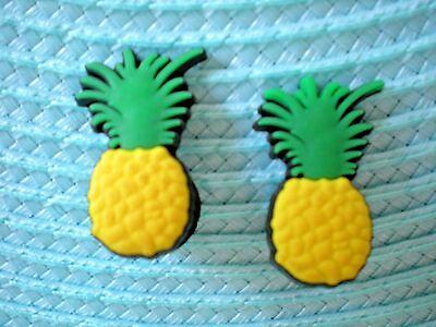 Jibbitz Croc Clog Shoe Charm Plug Button For Fitbit Wristband Belt  2 Pineapple