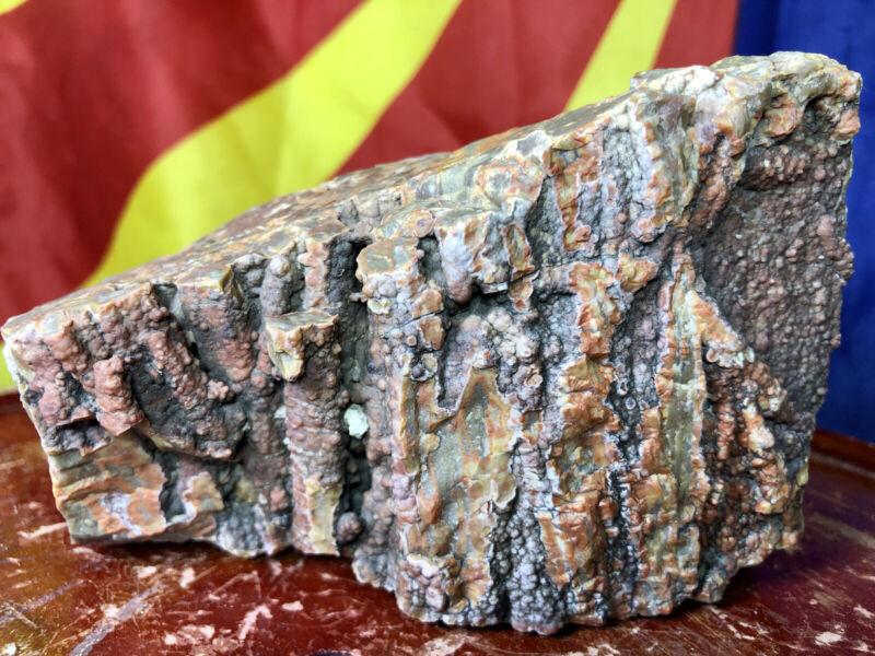 ☘️RR⚒: Top Quality Arizona Petrified Wood W/Druzy Chalcedony, 3 Lb
