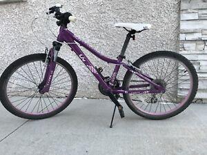 "Kids Giant/Liv 24"" Bicycle"
