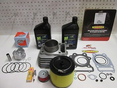 New  Complete Top End Cylinder Kit For A Honda Atv Trx 300  Fourtrax  1988 2001