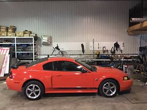 mustang mach one 2004