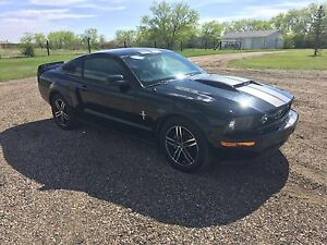 2006 Ford Mustang FOR SALE. MUST SEE