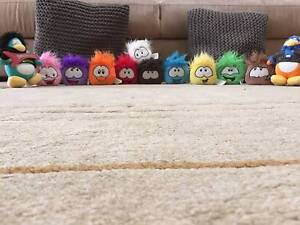 Super Puffle Collection Wentworthville Parramatta Area Preview