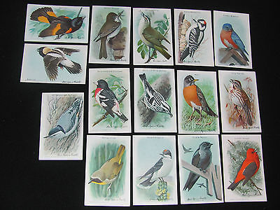 Vintage Church   Dwight Useful Birds Of America Series 9 Complete Set 15 Cards