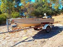 12ft tinny with 15hp mercury Baldivis Rockingham Area Preview