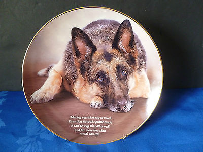 """DANBURY MINT 8"""" DOG COLLECTOR PLATE POETRY OF THE GERMAN SHEPHERD ALSATIAN"""