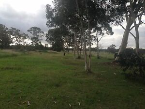 ACREAGE/SEMI RURAL FOR SALE BARGO Bargo Wollondilly Area Preview