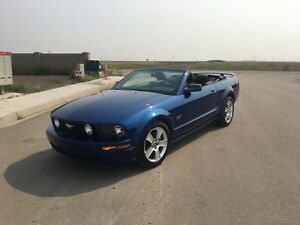 Great 2006 Mustang GT - Reduced