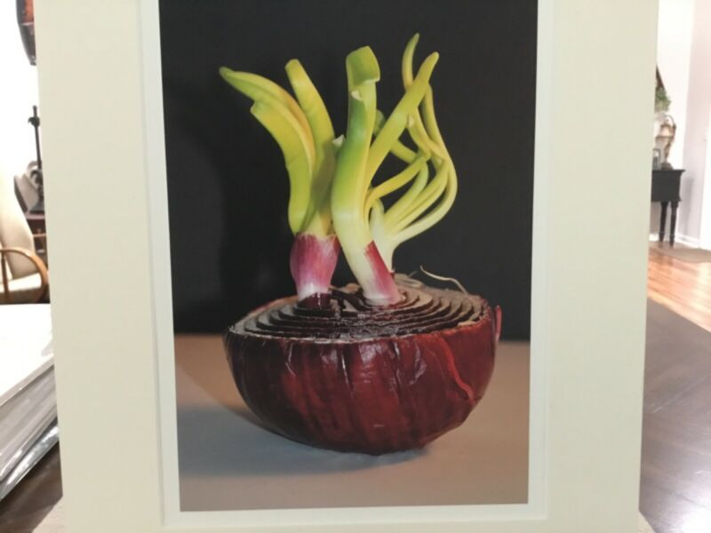red onion photograph