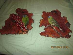 blue faced parrotfinch handpainted collectors plaques South Penrith Penrith Area Preview
