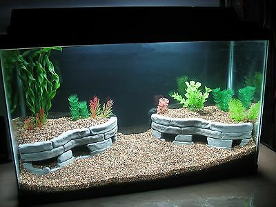 Tutorial Decorate Aquarium With Stones Ebay