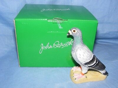 John Beswick Pigeon Bird JBB34 Collectable Ornament Present Gift Birthday NEW