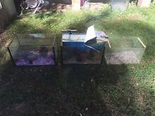 Fish tanks for sale or swaps for something of interest. Hillville Greater Taree Area Preview