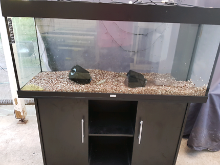 Juwel rio 240 4 foot fish tank with matching stand