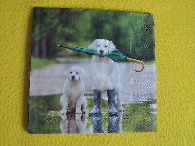 5 Servietten Hunde REGENSCHIRM  Retriever Labrador  Serviettentechnik Gummistief (Schirm Tief)