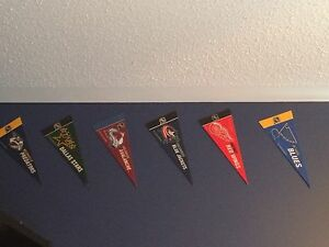NHL Mini Pennant Set