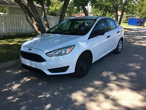 Ford Focus 2017 Beautiful great condition Need gone ASAP