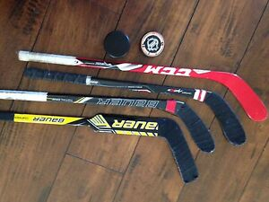 Mini sticks and pucks - 3 player & 1 goalie mini sticks