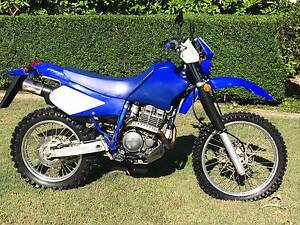 2007 Yamaha TTR250 low K's Samford Valley Brisbane North West Preview