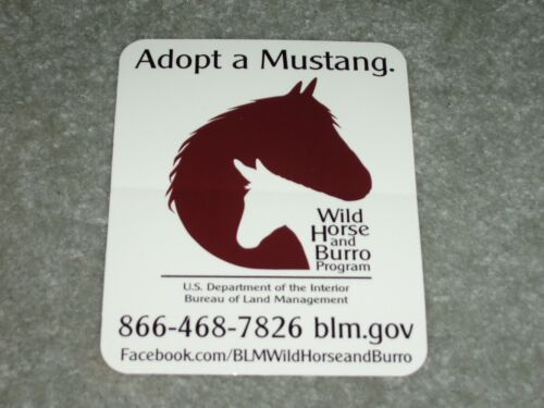 NEW BURRO WILD HORSE ADOPT Decal Sticker BLM Mustang Equine Car Trailer Sign