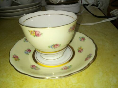 Lovely Colclough Bone China Tea Cup and Saucer