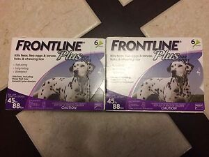 Frontline Plus for Dogs 45-88lbs