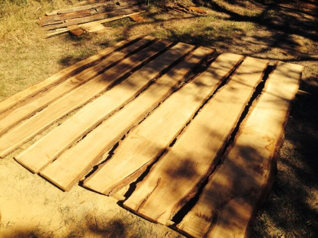 Timber slabs from chopping board size from 20 other for Gardening tools gumtree