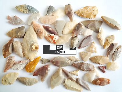 Neolithic Arrowheads x 50, Selection of Styles and Sizes - 4000BC - (0497)