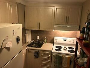Little Italy/Downtown (Preston St) 2 Bedroom Apartment For Rent