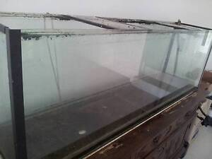 Standard 5 ft aquarium, cracked glass- can be used for  reptiles Panania Bankstown Area Preview